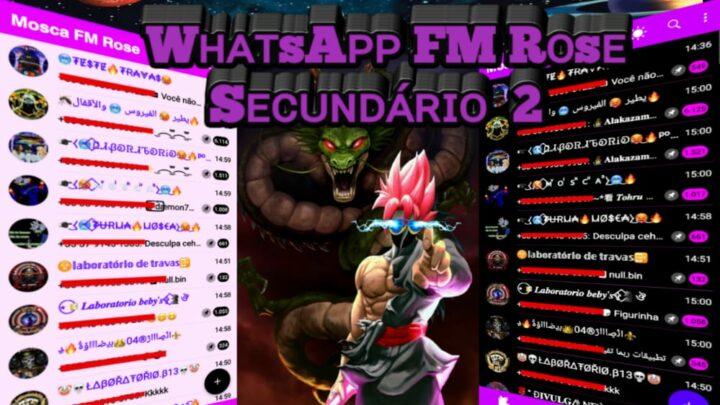 WHATSAPP ATUALIZADO – FM secundário